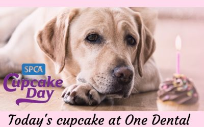 SPCA cupcake day – Monday